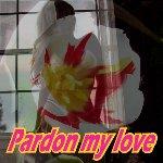 pardon my love