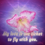 Fly Ticket